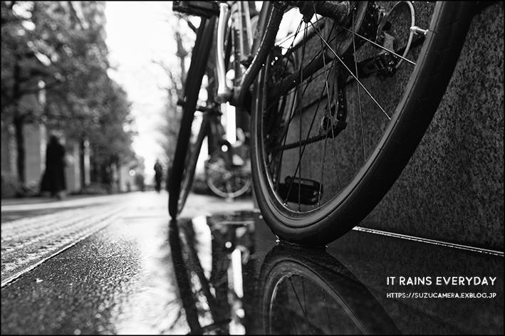毎日雨が続きます_f0100215_22480566.jpg