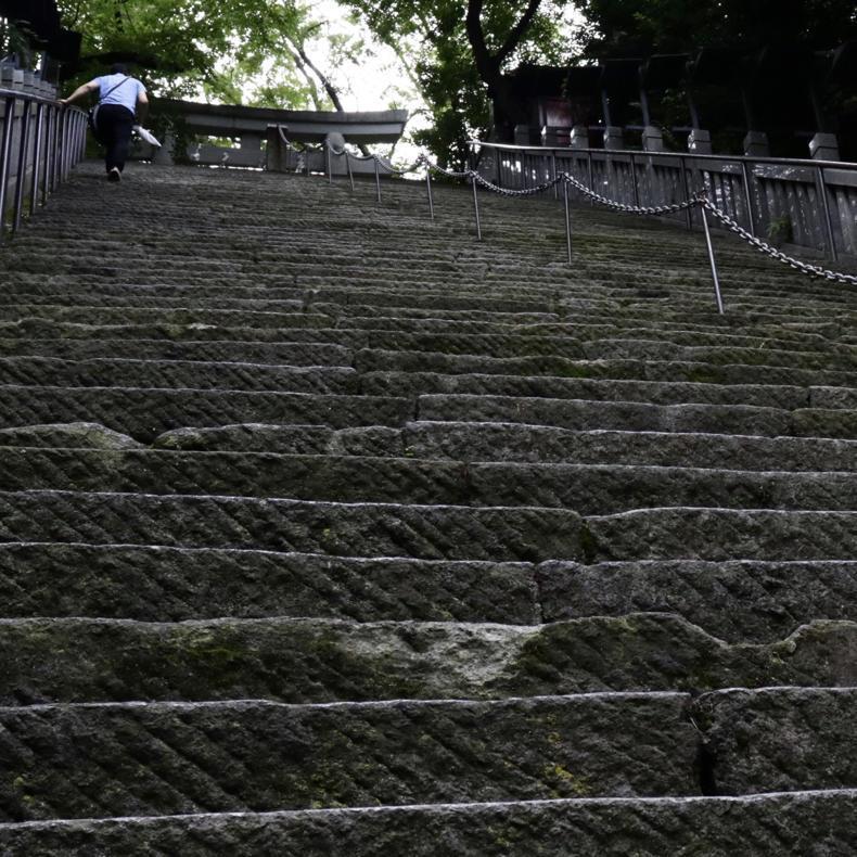 愛宕山の出世の石段を登ったので、これから出世しまくる_c0060143_18460121.jpg
