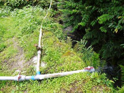 米作りの挑戦(2020) 田植えから1ヶ月が過ぎましたが、大雨で大ピンチです!_a0254656_17325850.jpg