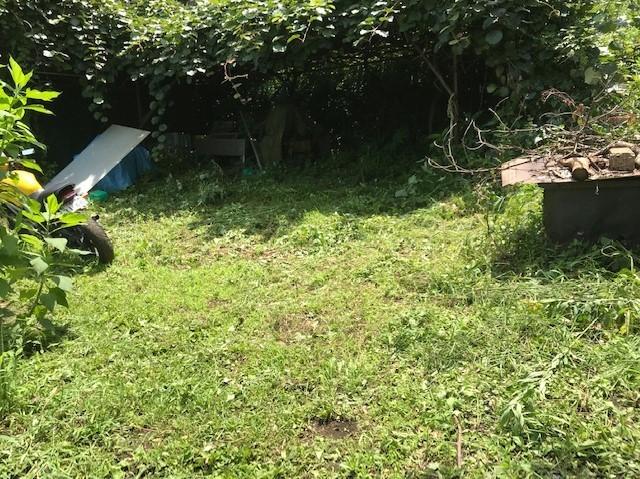 梅雨の晴れ間、汗だくで畑道の草刈り7・12_c0014967_06255434.jpg
