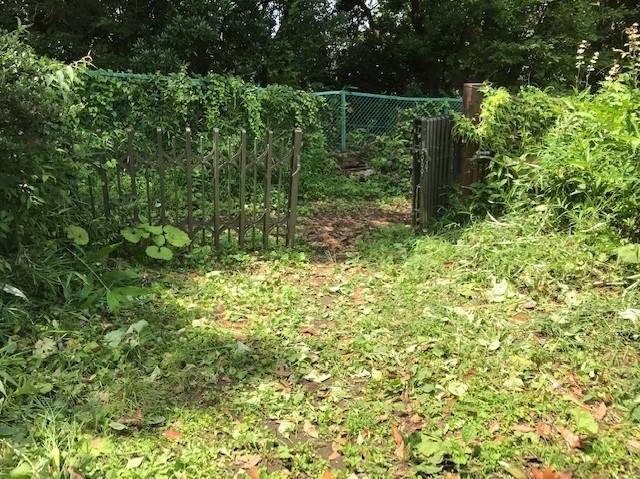 梅雨の晴れ間、汗だくで畑道の草刈り7・12_c0014967_06275216.jpg