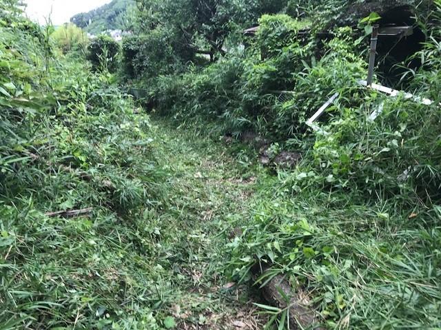 畑道に続き畑の前の赤道沿いの下草刈り7・13_c0014967_16480042.jpg