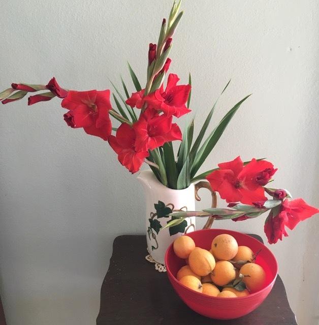 早朝の庭ートルコ桔梗、グラジオラス等々_e0350971_01354524.jpg