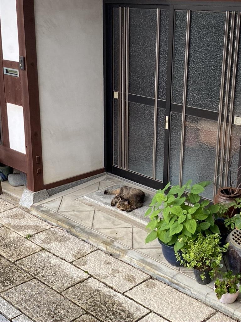 雨の月曜日には 〜今日のウグちゃん&ギャラリーから〜_c0334574_19010480.jpeg