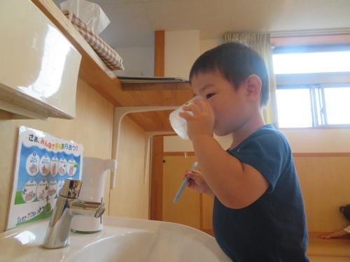 3歳児 歯磨き指導_f0327175_11403080.jpg
