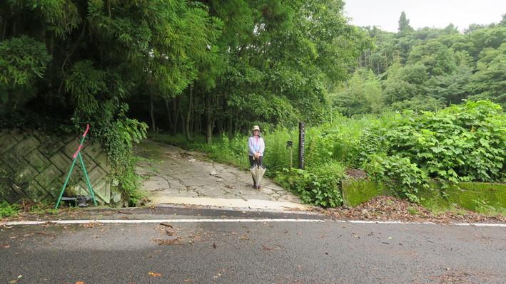 国東半島峯道ロングトレイルT2 2020.07.12(日)_a0166196_16103959.jpg