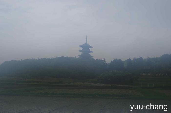 霧に煙る五重の塔、と思いきや……。_c0333332_18412290.jpg