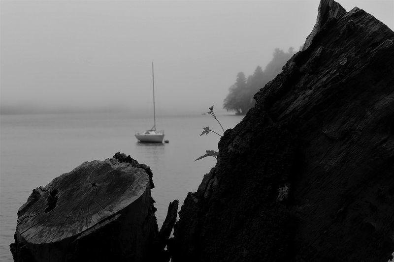 霧にまどろむ_b0150077_22072904.jpg