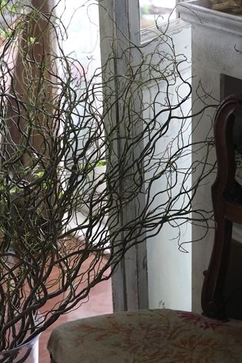 ドウダンツツジと 雲竜柳でさわやかな部屋。_e0237680_20073161.jpg