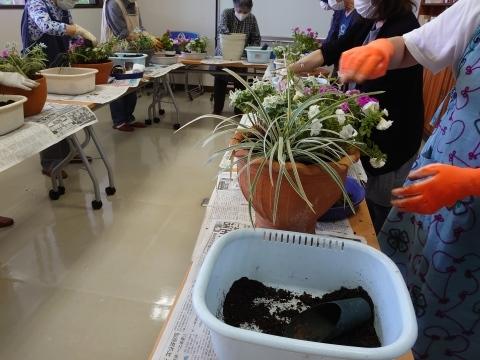 初夏の寄せ植え教室_b0187894_21305070.jpg
