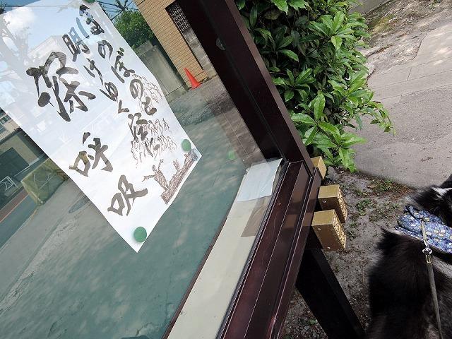 散歩屋日誌【45】_c0062832_15321912.jpg