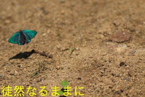 北海道遠征 ポイント②_d0285540_14242009.jpg