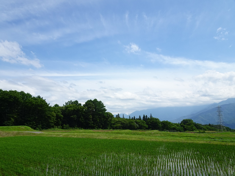 富士見町Tさん邸の現場より 1_a0211886_17532867.jpg