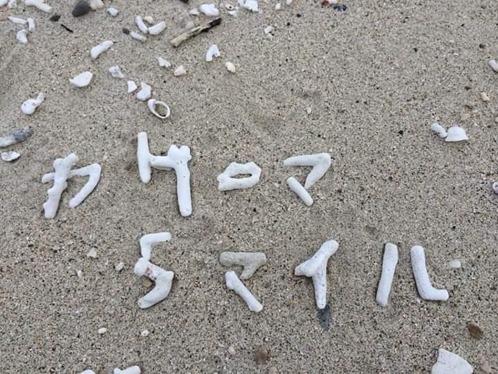 海宿5マイル☆20歳になりました!_e0220493_09335724.jpg