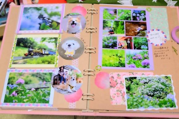 紫陽花のシャッフルプリント♪_d0189735_15302027.jpg