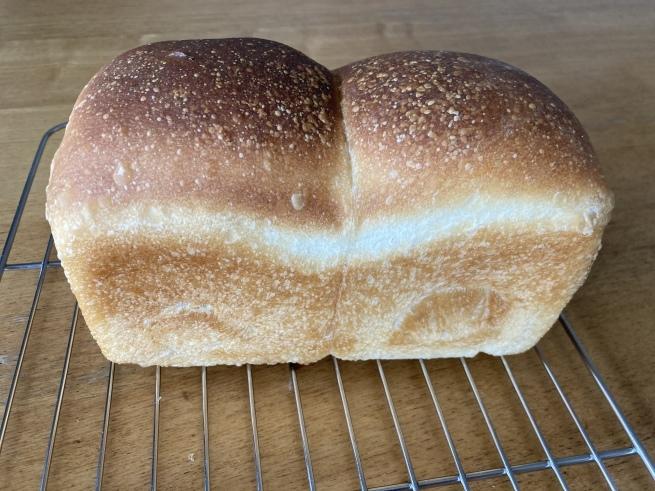 自家製酵母元種の山型食パン_c0407077_15000084.jpeg