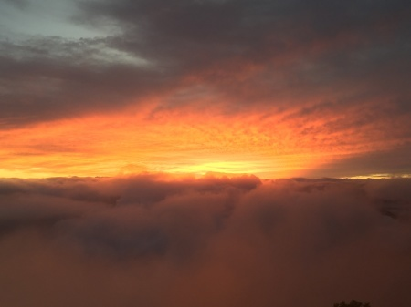 7月16日(木)朝の雲海。気温11℃。_c0089831_21542425.jpeg