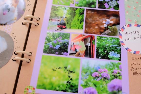 紫陽花のシャッフルプリント♪_d0189735_13244766.jpg