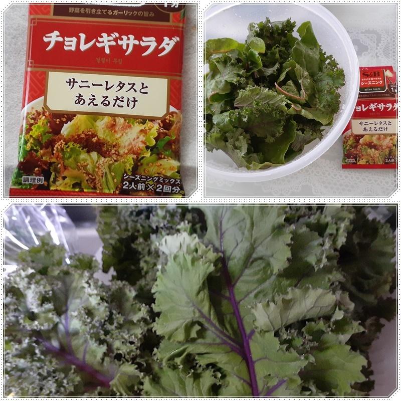 空心菜で楽しむ♪_b0236665_08415882.jpg