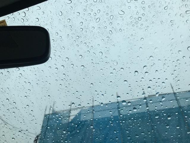 雨の日の通院はなかなか大変。。_f0242002_20330719.jpg