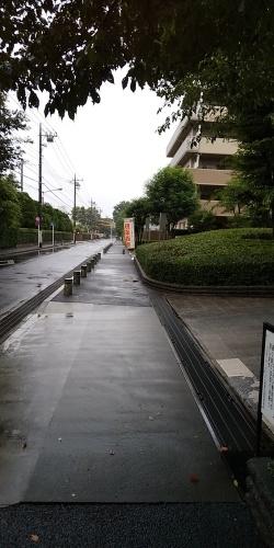 梅雨明けは未だでも進む交際もあります。_b0255217_10222811.jpg