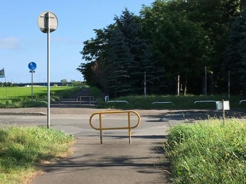 あいの里緑地散歩と薬草園_e0326953_19552409.jpg