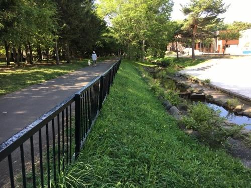 あいの里緑地散歩と薬草園_e0326953_19590602.jpg