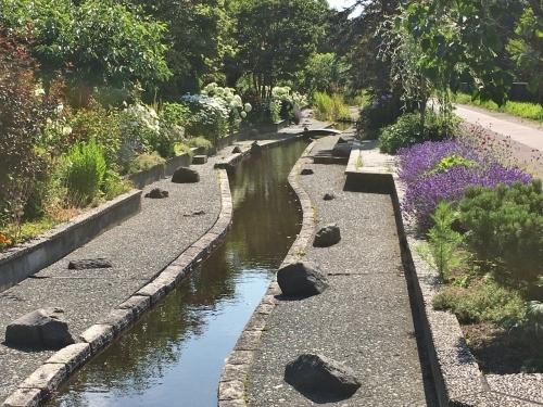 あいの里緑地散歩と薬草園_e0326953_20021141.jpg