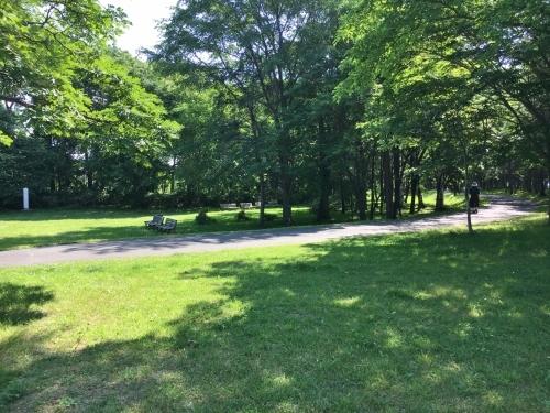 あいの里緑地散歩と薬草園_e0326953_20082720.jpg