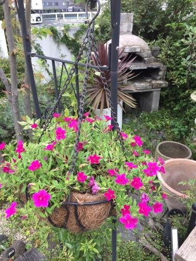入荷しました~ガーデン雑貨販売と外構工事の広島市佐伯区楽樹工房_f0205854_16225361.jpg