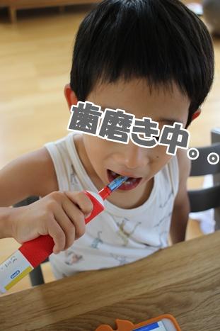 子供が喜ぶ便利グッズ_d0291758_2133482.jpg