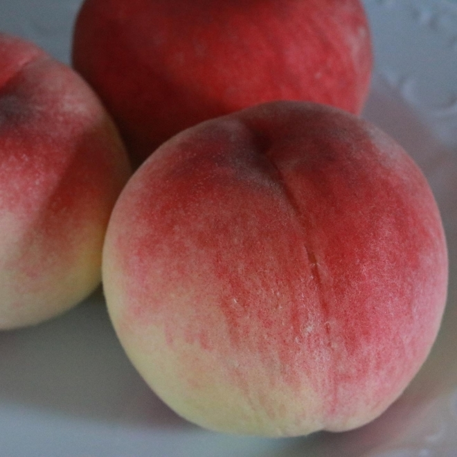桃の季節_b0360474_01472736.jpg