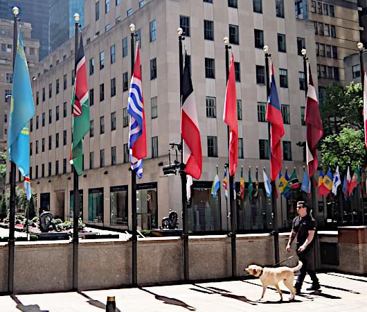 NYのロックフェラー・センターの192本の旗でアート展(The Flag Project)開催へ_b0007805_22052622.jpg