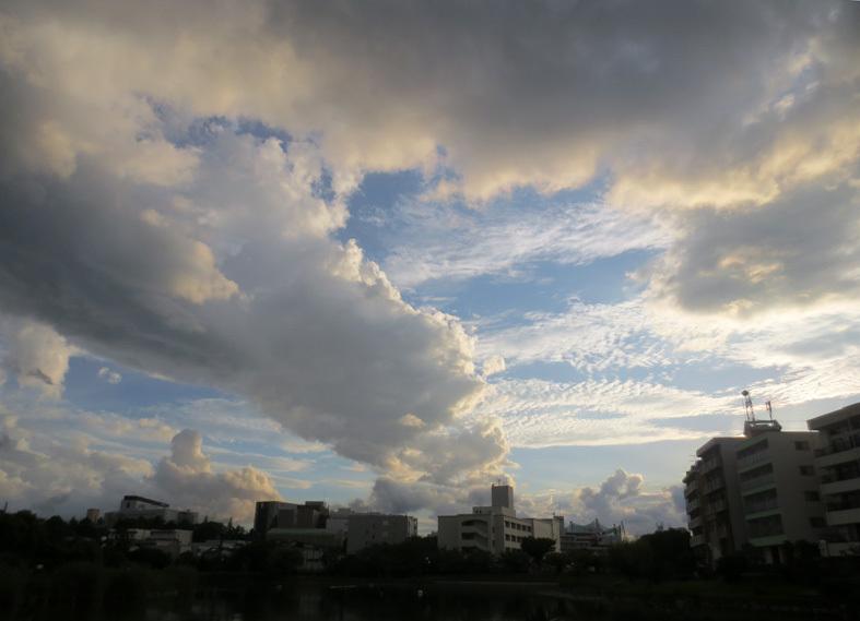 ■明けるかどうか分からぬ梅雨の空、そしてこの国の暗雲…──週替わりの夕暮れ[7/14・16・19]_d0190217_23574794.jpg