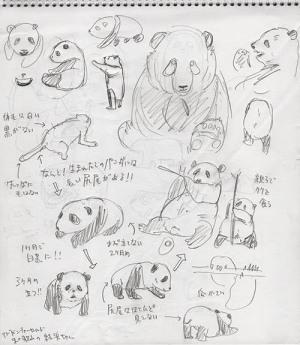 白黒大熊猫制作記_f0152544_11500506.jpg