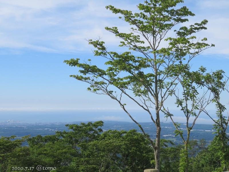 階上岳(はしかみだけ)と蝶_f0067179_23203800.jpg