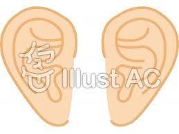 耳が、_a0049808_09233424.jpeg