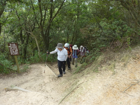 須磨アルプス新バリエーションルート 横尾山から天皇池を経て東山_c0218841_14354804.jpg