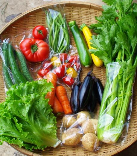 今週の野菜セット(7/21~7/25着)_c0110869_12442612.jpg