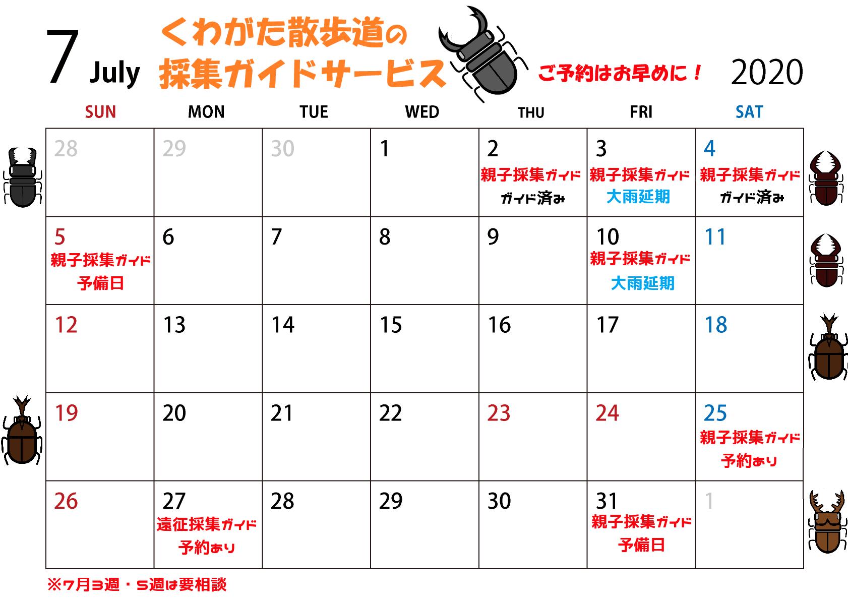 洞マニアな親子採集ガイド!東京都G様2日連続、でっかいヒラタクワガタを採る!_f0183484_02584937.png