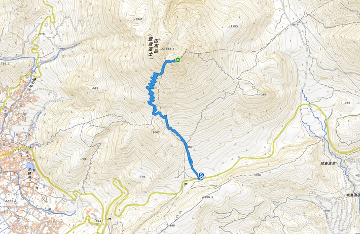 由布岳のヤマオダマキが見頃です 2020.07.16(木)_a0166196_1021437.jpg