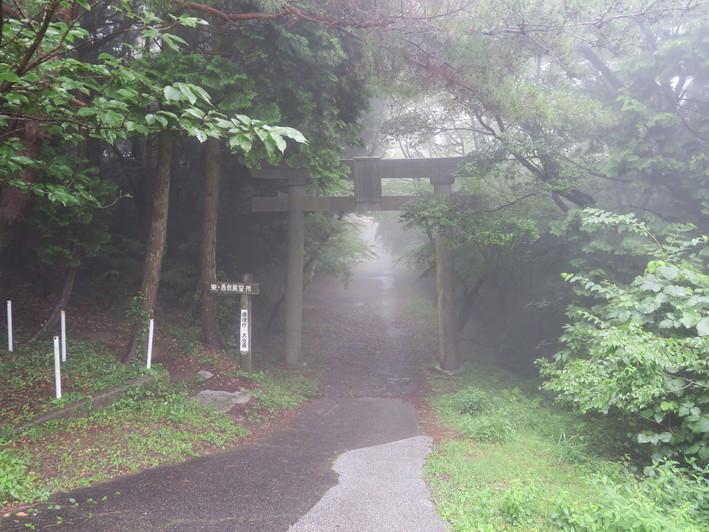 梅雨明け間近の八面山 2020.07.19(日)_a0166196_17375955.jpg