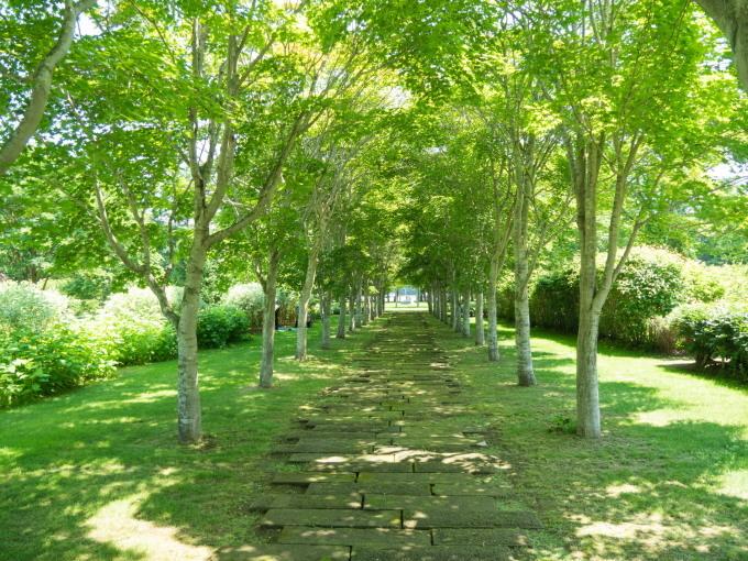 やっと夏日の中札内村、待望のオープン「中札内美術村」_f0276498_22404072.jpg