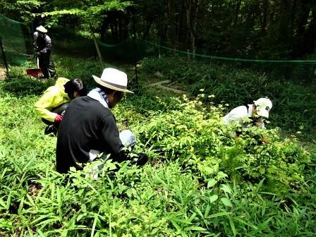 企業の森活動日記 サーラエナジー㈱ サーラの森_d0105723_19213769.jpg