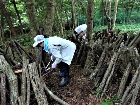企業の森活動日記 サーラエナジー㈱ サーラの森_d0105723_19215665.jpg