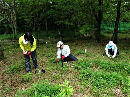 企業の森活動日記 サーラエナジー㈱ サーラの森_d0105723_19220840.jpg