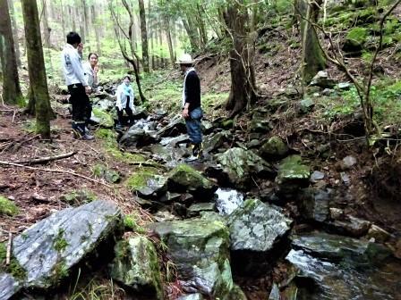 企業の森活動日記 サーラエナジー㈱ サーラの森_d0105723_19222104.jpg