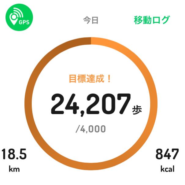 今日もそれなりに歩きました_c0060143_16043821.jpg