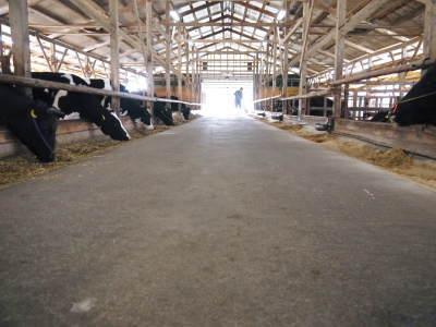 熊本県産A5ランク黒毛和牛100%のハンバーグステーキ!令和2年最終出荷は12月16日(水)残りわずかです_a0254656_19343722.jpg