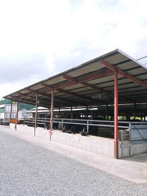 熊本県産A5ランク黒毛和牛100%のハンバーグステーキ!令和2年最終出荷は12月16日(水)残りわずかです_a0254656_20072675.jpg